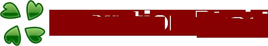 DDoS : les Anonymous déconseillent d'attaquer le site Hadopi.fr