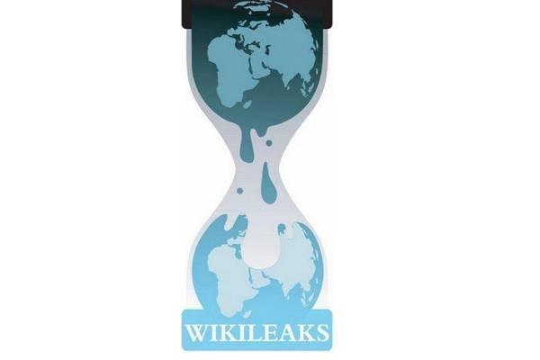 Le hacker responsable de l'attaque de WikiLeaks s'exprime