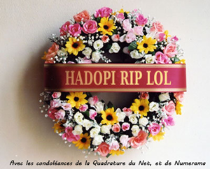 Hadopi ? Même pas peur…