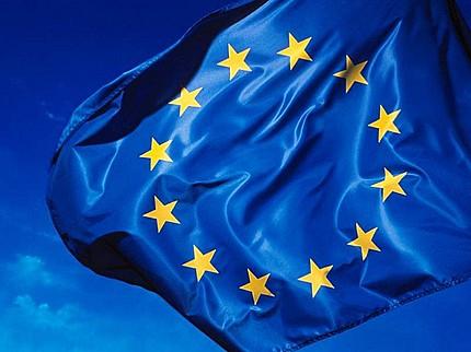 La Commission européenne joue un grand rôle pour rendre effectif le droit communautaire de l'environnement. DR