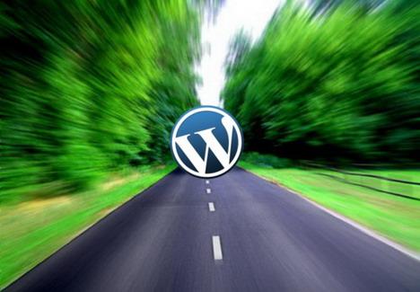 Optimiser un site WordPress sur serveur dédié pour un trafic important