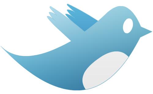 Un hacker de 15 ans trouve une faille XSS sur Twitter et Facebook